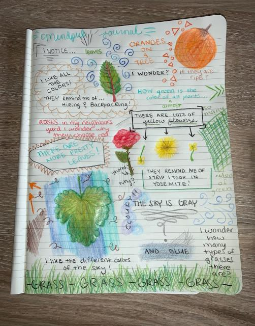 Nature Journal Entry