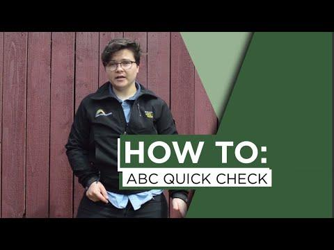 How to: ABC Quick Check
